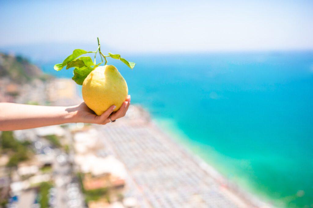 Zitronenreisen.de